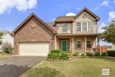 Plainfield Single Family Home New: 24030 West Marathon Lane