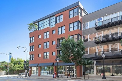 Chicago Condo/Townhouse New: 1601 South Halsted Street #508