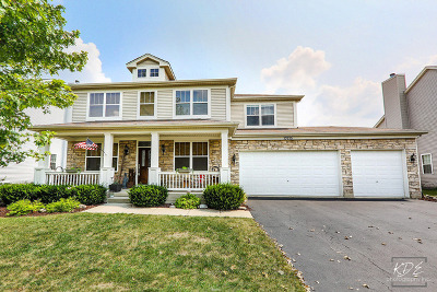 Plainfield Single Family Home New: 13715 Meadow Lane
