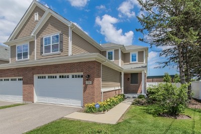 Palatine Condo/Townhouse New: 751 North Winchester Drive