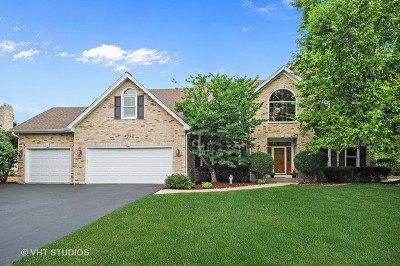 Naperville Single Family Home For Sale: 4352 Camelot Circle