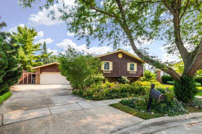 Elgin Single Family Home New: 203 Brookside Drive