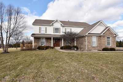 St. Charles Single Family Home New: 37w200 Red Gate Road