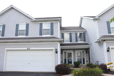 Naperville Condo/Townhouse New: 827 Donelson Court