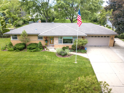 Prospect Heights Single Family Home For Sale: 1104 North Maple Lane