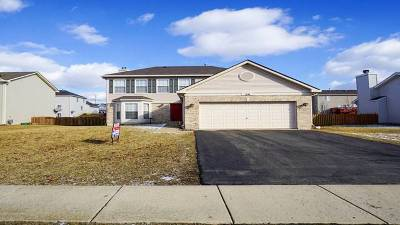 Bolingbrook Single Family Home New: 216 North Orchard Drive