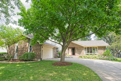 Naperville IL Single Family Home New: $429,500