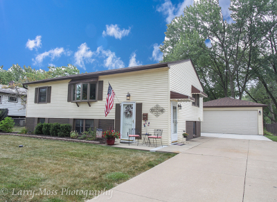 Orland Park Single Family Home New: 8943 Fairway Drive