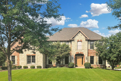 St. Charles Single Family Home New: 4135 River Ridge Drive