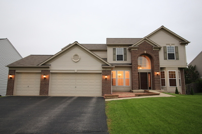 Bolingbrook Single Family Home New: 3 Privett Court