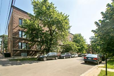 Condo/Townhouse New: 1536 West Cornelia Avenue #2