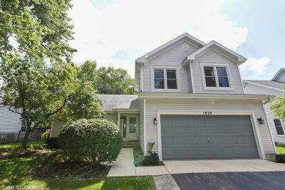 Elgin Single Family Home New: 1025 Hobble Bush Lane