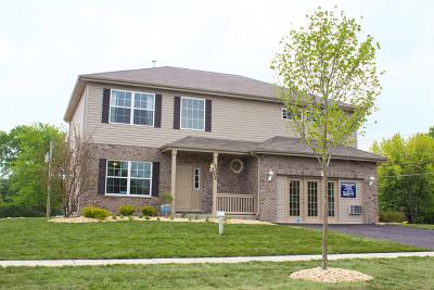 New Lenox Single Family Home New