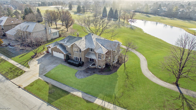 Naperville Single Family Home New: 3901 White Eagle Drive West