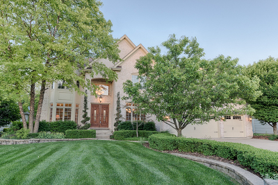 Naperville IL Single Family Home New: $839,900