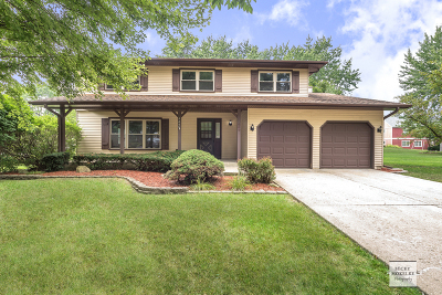 Bolingbrook Single Family Home New: 649 Feather Sound Drive