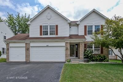 Round Lake Single Family Home New: 185 Havenwood Drive
