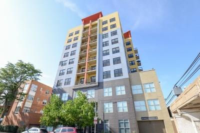 Condo/Townhouse New: 1122 West Catalpa Avenue #907