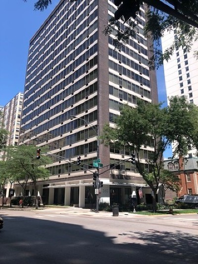 Condo/Townhouse New: 360 West Wellington Avenue #12F