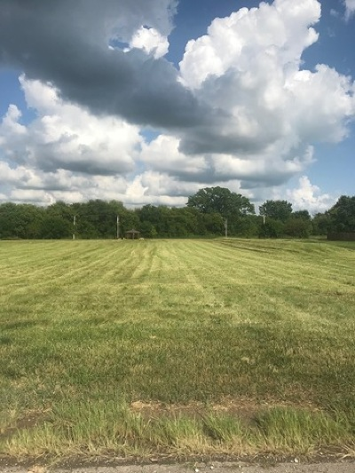 Hampshire Residential Lots & Land For Sale: Lot 37 Oak Knoll Drive