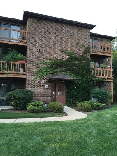 Lisle Condo/Townhouse New: 2210 Abbeywood Drive #E