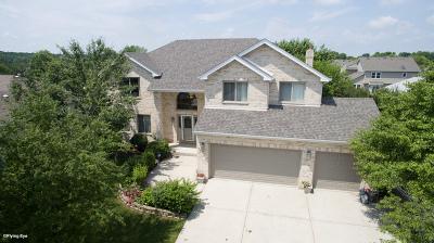 Romeoville Single Family Home New: 626 Superior Drive