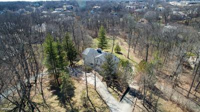 Burr Ridge Single Family Home For Sale: 9340 South Madison Street