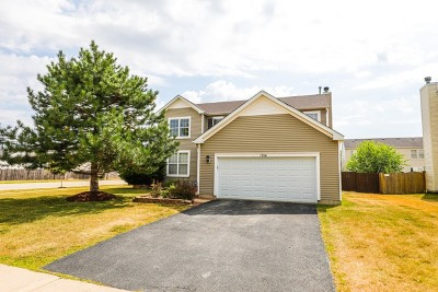 Plainfield Single Family Home New: 1314 Bridgehampton Drive