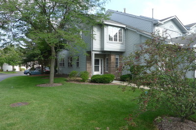 Palatine Condo/Townhouse New: 509 West Parkside Drive