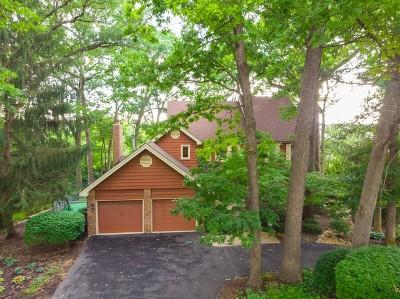 Burr Ridge Single Family Home For Sale: 10s730 South Jackson Street