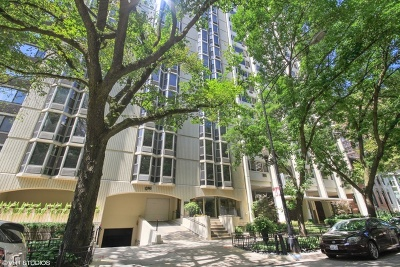 Condo/Townhouse New: 1340 North Dearborn Street #3C
