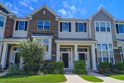 Lemont Condo/Townhouse New: 16725 Brighton Drive