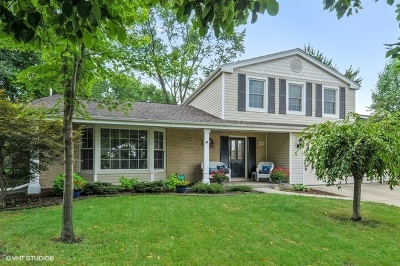 Naperville IL Single Family Home New: $384,000