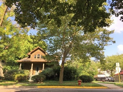 Chicago Residential Lots & Land For Sale: 3801 North Lowell Avenue