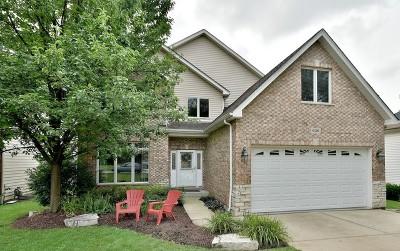 Elmhurst Single Family Home For Sale: 636 West Armitage Avenue