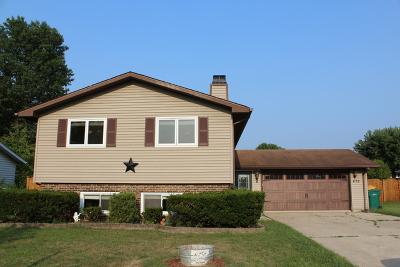 Coal City Single Family Home For Sale: 475 North Shabbona Street