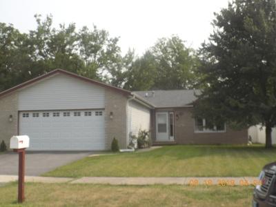 Steger Single Family Home For Sale: 172 Cedarwood Drive