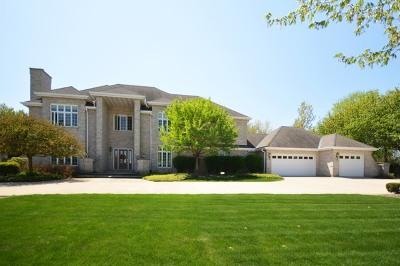 Shorewood Single Family Home New: 24521 West Park River Lane