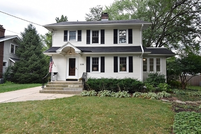 Batavia Single Family Home New: 226 North Jefferson Street