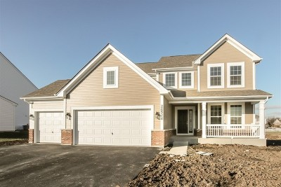 Channahon Single Family Home Price Change: 26526 West Old Stage Lot#17 Lane