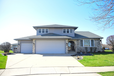 Mokena Single Family Home Price Change: 9851 Derby Court