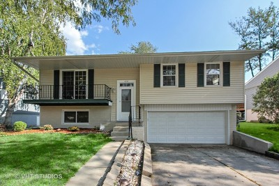 Buffalo Grove Single Family Home New: 425 White Pine Road