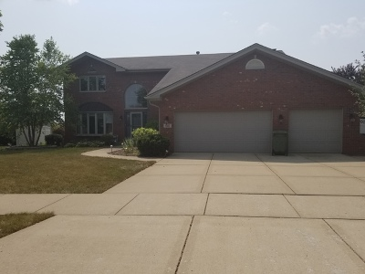 Tinley Park IL Single Family Home New: $395,900