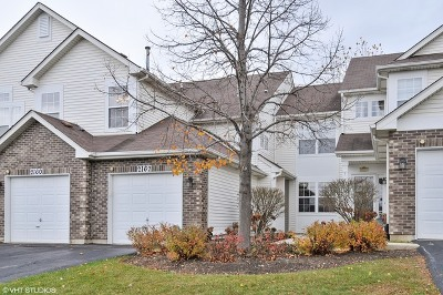 Naperville Condo/Townhouse New: 2162 Fulham Drive #2162