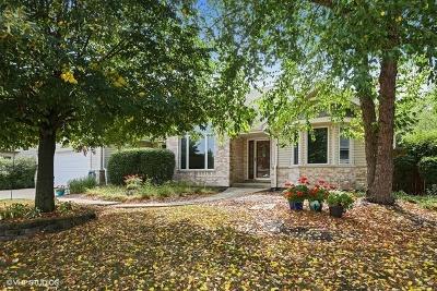 New Lenox IL Single Family Home New: $326,000