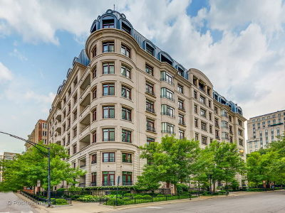 Condo/Townhouse New: 65 East Goethe Street #5N