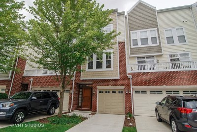 Forest Park Condo/Townhouse Price Change: 526 Grove Lane