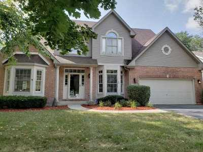 Naperville Single Family Home New: 2312 Wild Timothy Road