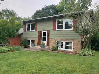 South Elgin Single Family Home New: 825 Revere Road