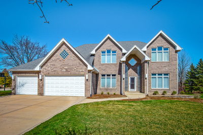 Frankfort IL Single Family Home New: $459,000